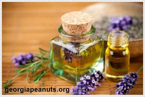 Khử mùi hôi phòng kín bằng tinh dầu